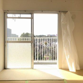 こちらは6帖の和室。(※カーテンは撤去されます)