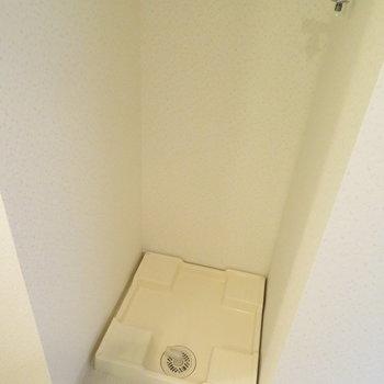 トイレの前に洗濯機置き場が※写真は同間取り別部屋のものです。