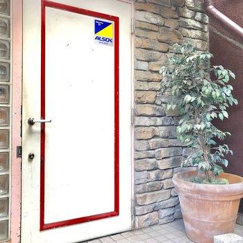 こちらがエントランス!可愛い扉と植物が映えます。