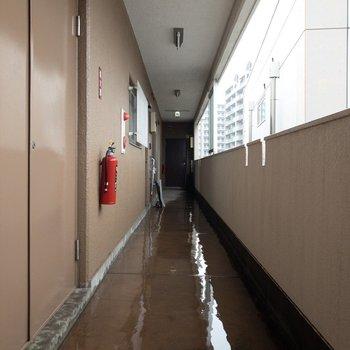 共用部は雨が降ると水浸しになります。