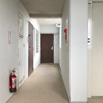 エレベーターもしっかりと。ブラウンのドアはほんのりレトロ。