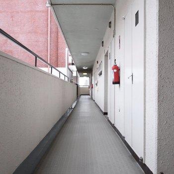共用廊下もすごい長い・・・