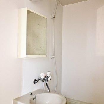 洗面台はこんな感じ※写真にはフラッシュを使用しています