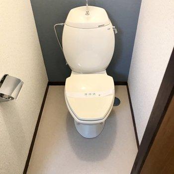 中身はまるっこいトイレ!グラマラスーーー!