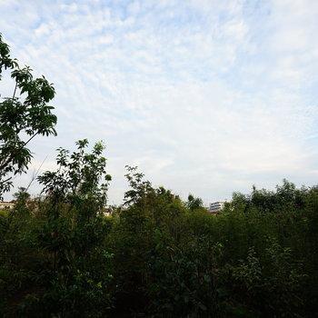 眺望は緑いっぱいで気持ちいい!※写真は1階の同間取り別部屋です。
