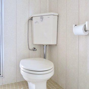 トイレはこじんまりとしています※写真は通電前のものです