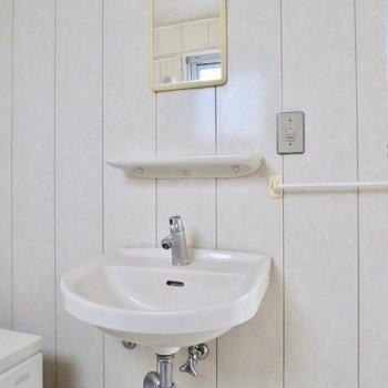 洗面台はミニマム※写真は通電前のものです