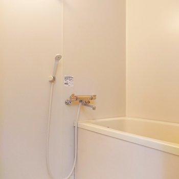 浴室はきれいで汚れは見当たりません。