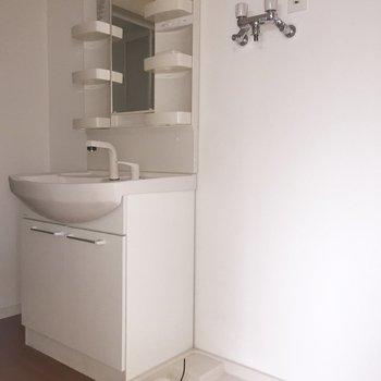 洗面台と洗濯機は脱衣所に。※写真は通電前・フラッシュを使用しています