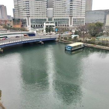 川辺でのびのびと。