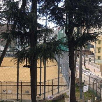 ベランダはありませんが、窓からは目の前の小学校が見えます