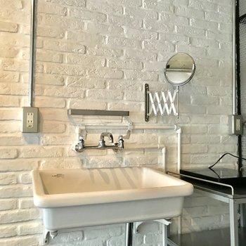 この鏡が可動式で、愛着湧きそうでした。洗面台とシンクを兼ねています。