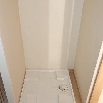 洗濯パンも脱衣所にありますよ。※写真は2階の同間取り別部屋のものです