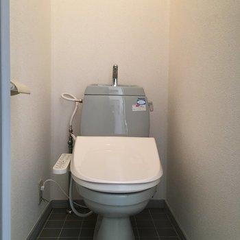珍しいグレートイレ。個室がうれしい。※クリーニング前の写真です。