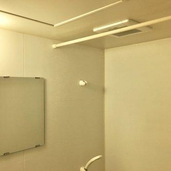 鏡にカーテンレールも付いてます。