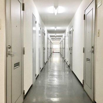 共用部】内廊下なので雨の心配はありません。
