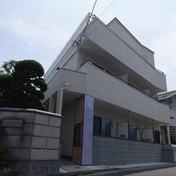 ピノ・ノワール篠崎