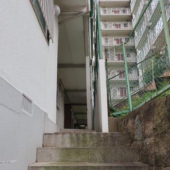 階段をトントントンと登ってゆくと・・・