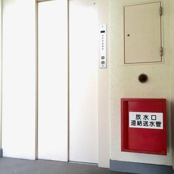 3.5階な位置にありました!2人ぐらいしか乗れないミニマムなエレベーター。