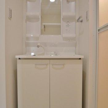 大きめの洗面台