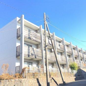 大きなマンションで、周りは閑静な住宅街です
