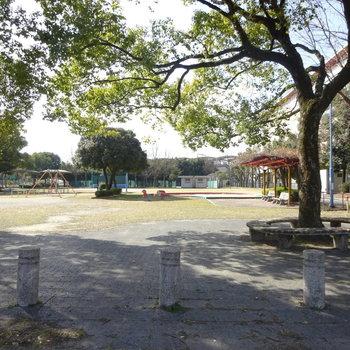のどかな公園もありますよ〜!