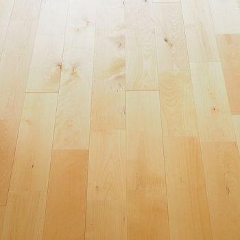 【イメージ】床材は明るい無垢床!バーチ材を使います!