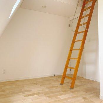 壁が斜めになっていますが、下の部分は垂直なのでベッドは壁付けできそうです。