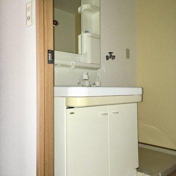 洗面台はかなり大きめ。シンクも深くていいですね〜(※写真は清掃前のもので、フラッシュ撮影しています)