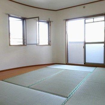 広々とした和室。光がたっぷり入って気持ちいい!