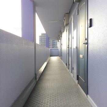 共用廊下も綺麗に掃除されていますね。