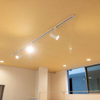 ライティングレールです。好みの照明に付け替えることもできます。