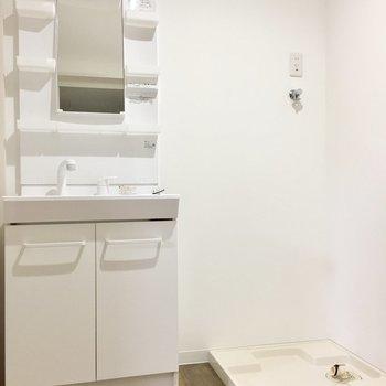 脱衣所に洗濯機を置けます。