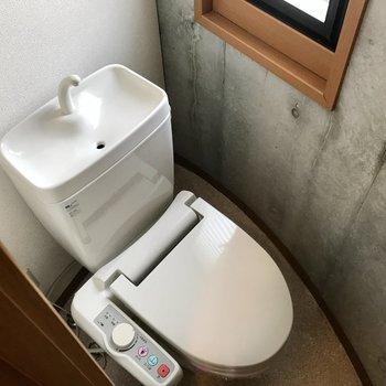 トイレは個室です。打ちっぱなしがいい味出してます