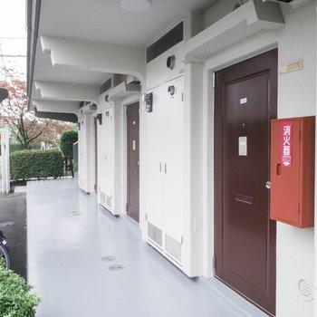 お部屋の前の廊下です。ブラウンの扉がレトロかわいい。