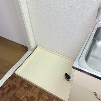 洗濯機はキッチンの横にすっぽり収まります。