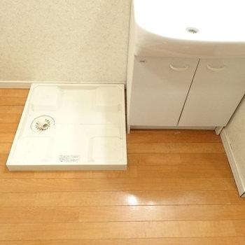 洗濯パンは洗面のとなり。脱衣スペースも結構広いです。※写真は同間取り別部屋のものです