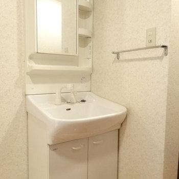 シャワーもついた洗面台。※写真は同間取り別部屋のものです