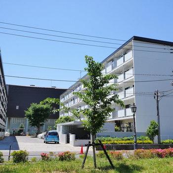 2棟の元・社宅。今回は右のA棟です。