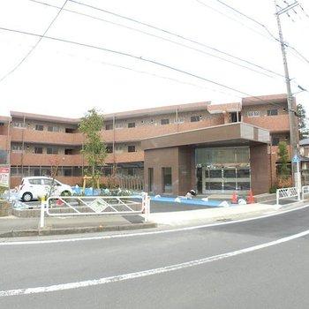 レゴリス成城3