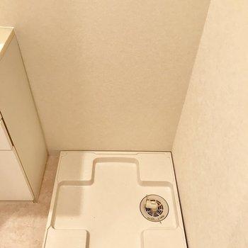 脱衣所に洗濯機が置けます。※写真は11階の同間取り別部屋のものです