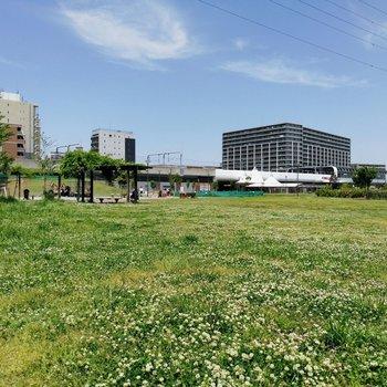 【おまけ】駅前の公園。のどか〜!