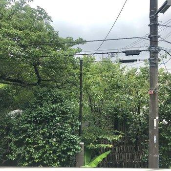 眺望は緑がたくさん