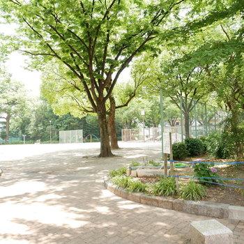 近くに広めの公園※前回募集時の写真です。