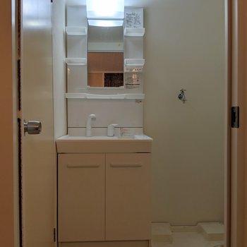 収納力◎な独立洗面台!(※写真は2階の同間取り別部屋、清掃前のものです)