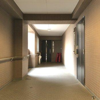 廊下には太陽の光が差し込みます。