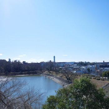 眺望は猫ヶ洞池と青空と遠くに東山スカイタワー