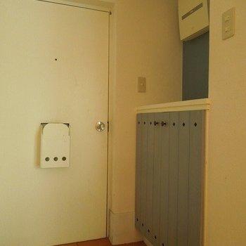 玄関のシューズクローゼットも水色 ※写真は前回募集時のものです。