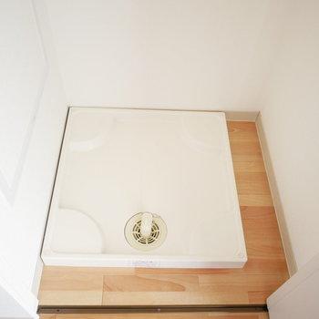 洗濯機は収納扉で隠せます!※写真は別部屋