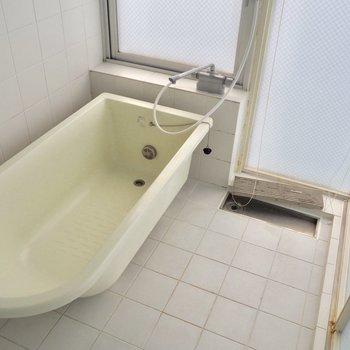明るい浴室※写真はクリーニング前のものです